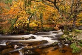 River Dart in Autumn
